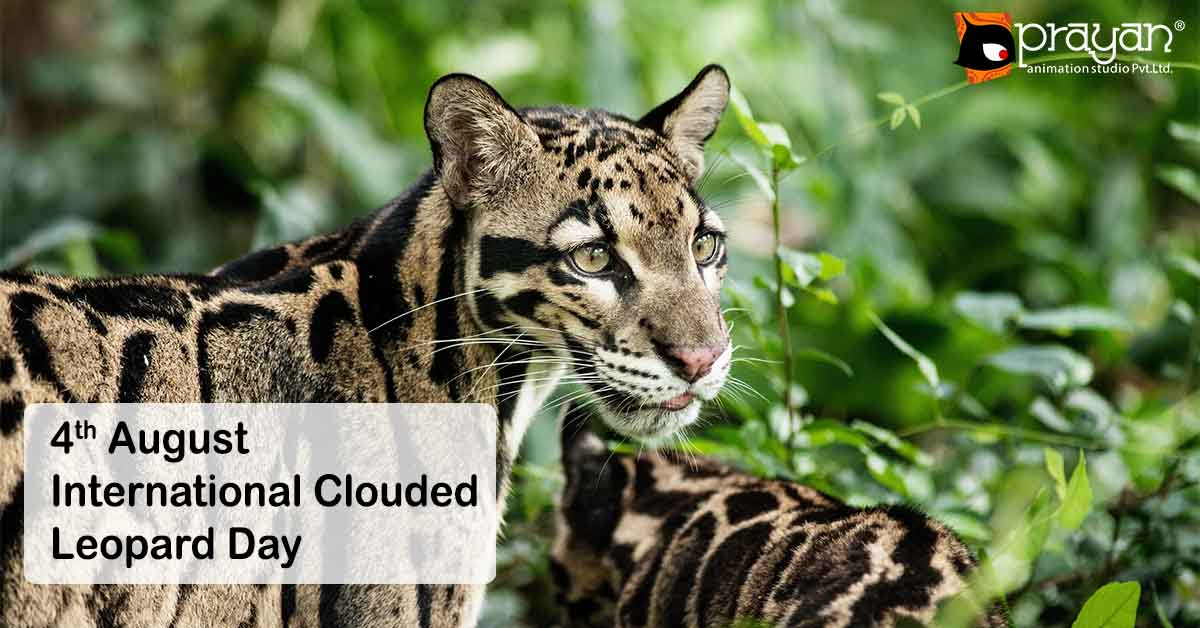 4th August: International Clouded Leopard Day   Prayan ...
